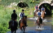 Have a Wonderful Horse Riding Holidays in Ireland Here
